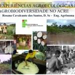 AGROECOLOGIA-NO-ACRE-2013-1